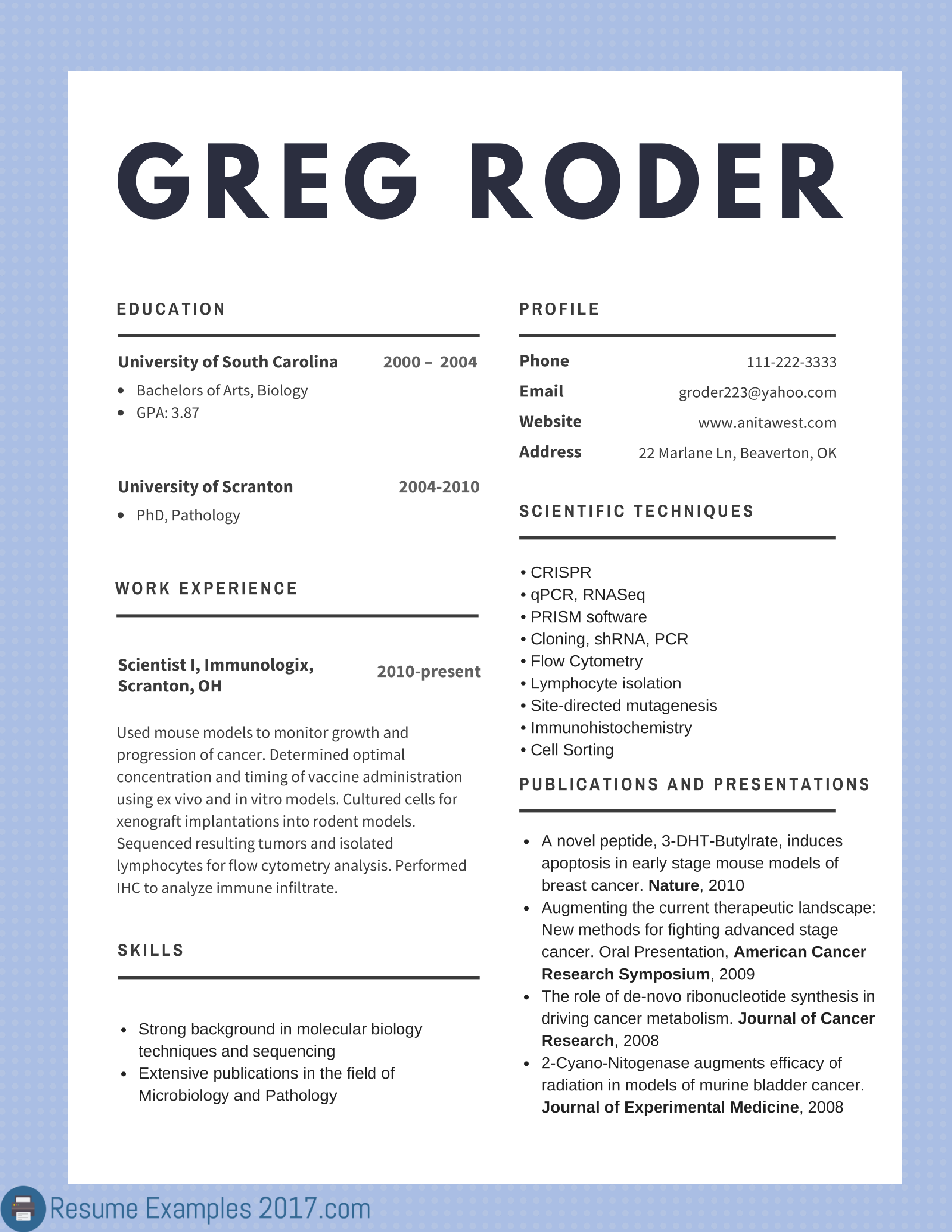 Resume Examples 2017 For Jobs