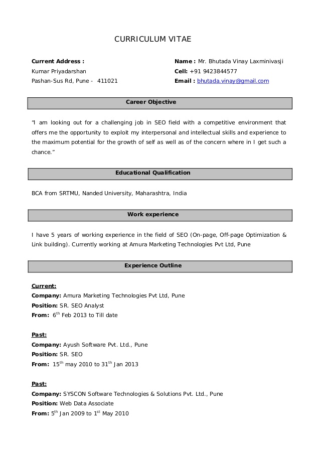 Resume Format For 5 Years Experience In Marketing Resume