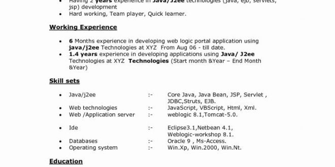 Sample Resume Format For 8 Months Experience