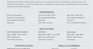 Resume Templates Latest