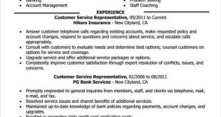 Resume Examples Good