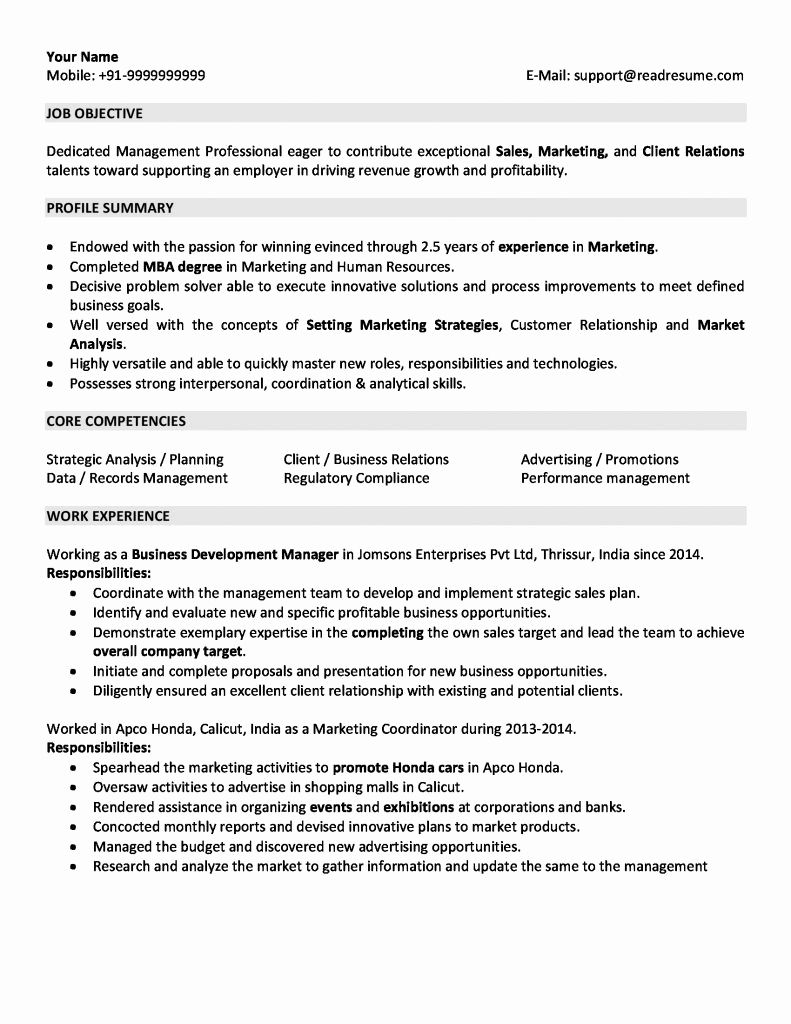 Resume Format For 5 Years Experience In Sales