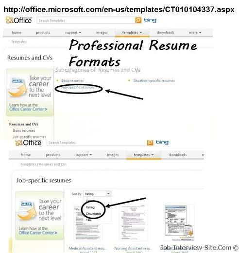 Resume Format Job Interview