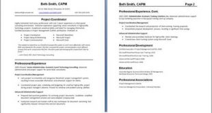 Professional 2 Page Resume Examples