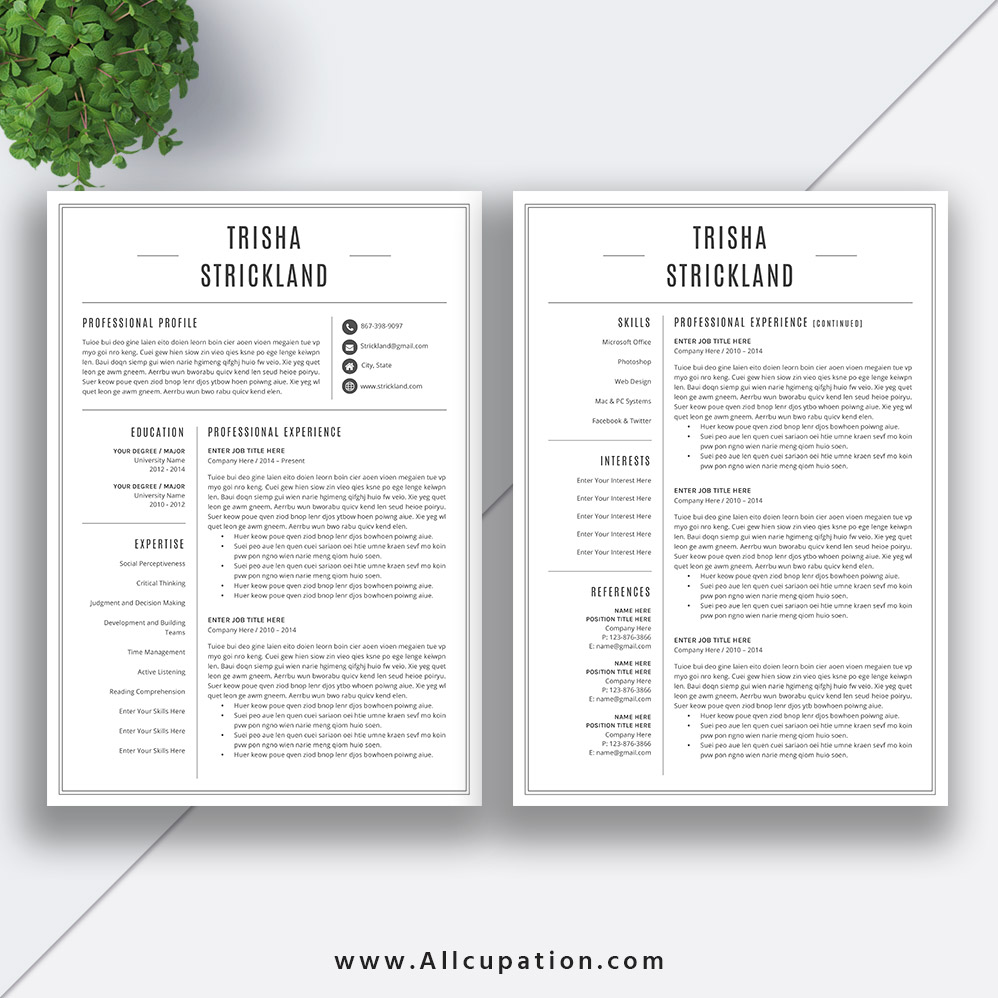 2 Page Resume Templates