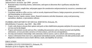 Resume Format Ideas