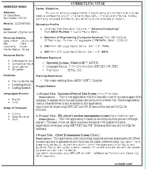 3 Page Resume Format For Freshers